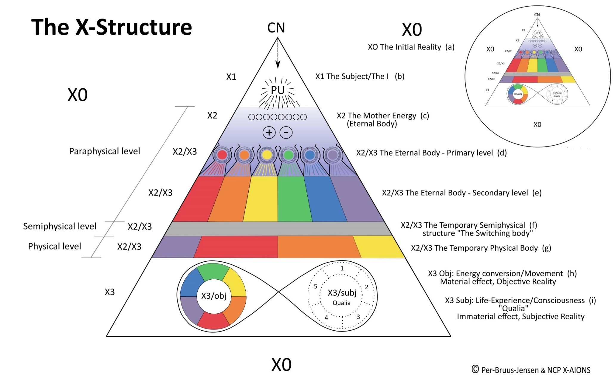The X-Structure - The Living Being and The Organism (Xom3) NCP X-AIONS
